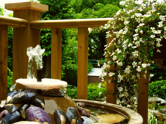 The Wellshire Bed and Breakfast: Deck water feature