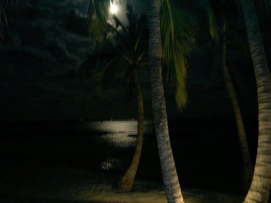 Regattas of Abaco: A full moon from the front deck of our house.