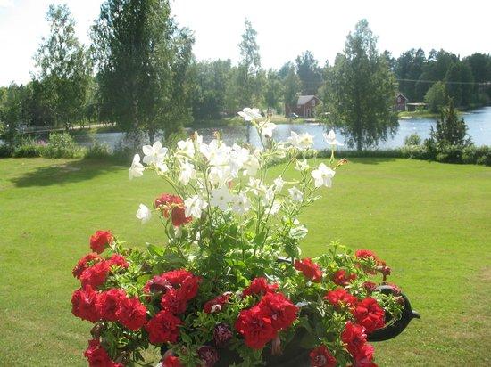 Jadraas, Sweden: View of the garden. Vy över trädgården.