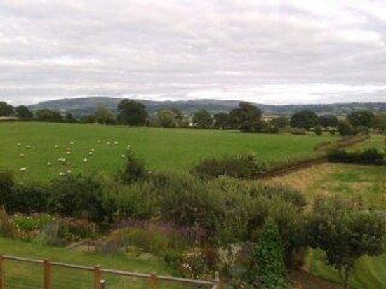 Shropshire Hills Bed and Breakfast: Fabulous view