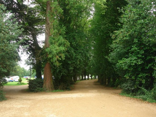 Wing Hall Estate: Long driveway approaching the campground