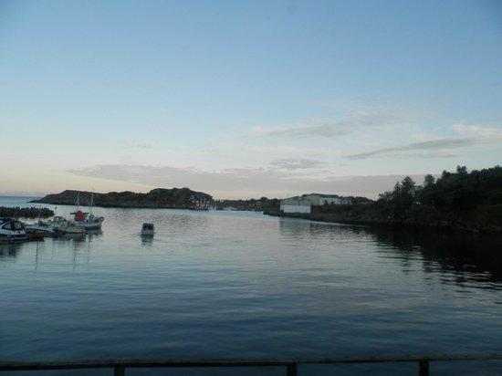 Stamsund, Norway: Vista sul porto!