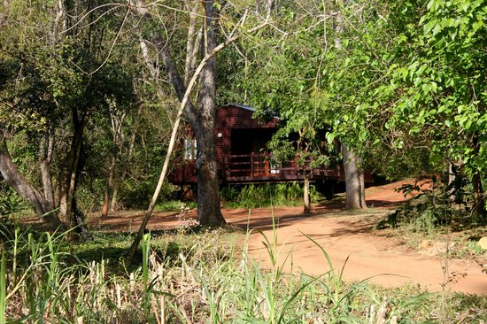 Buhleni Farm Chalets: Chalet