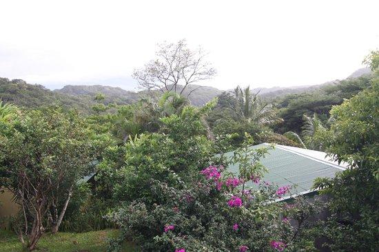 Rinconcito Lodge: Uitzicht