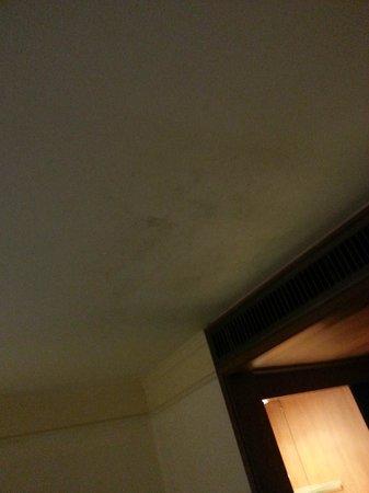 Hansa JB Hotel: Un plafond sale