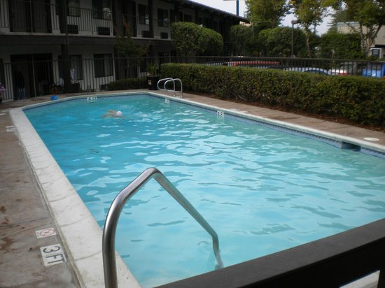 Best Western Plus Inn Scotts Valley : Pool