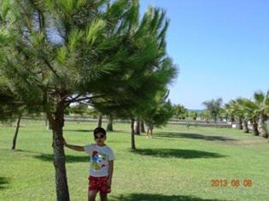 Sural Resort: garden
