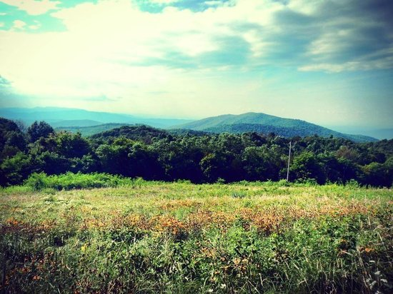 Max Patch Hot Springs, NC - Aug 2013