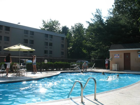 Motel 6 Milford : Great pool!