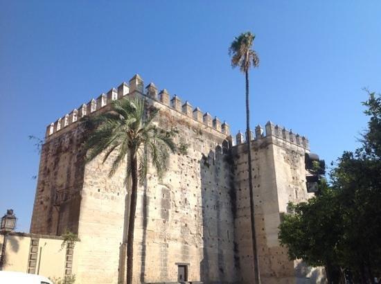 Alcázar de Jerez de la Frontera: Alcazar