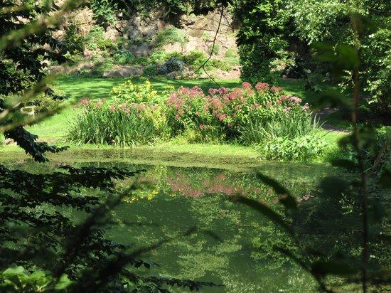 Leonard J. Buck Garden: Lower Pond