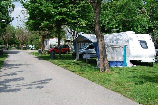 Camping Serenissima: L'area verde del campeggio