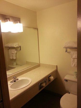 Georgetown Inn : Bathroom sink and counter
