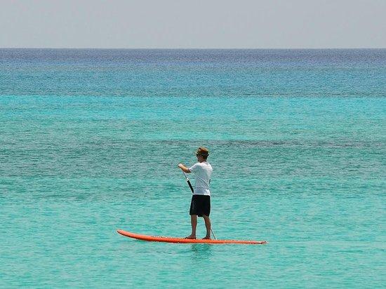 SMB w/ Cayman Stand Up Paddle Co.