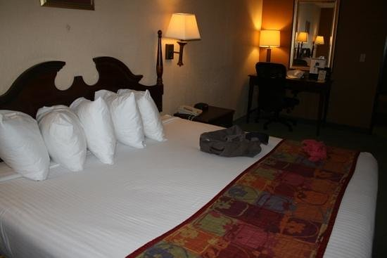 Best Western Alamo Suites: zona del dormitorio con cama king