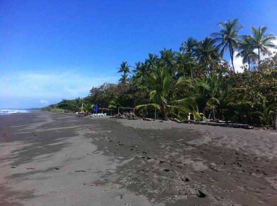Dos Palmas Beach Cabinas: Beach