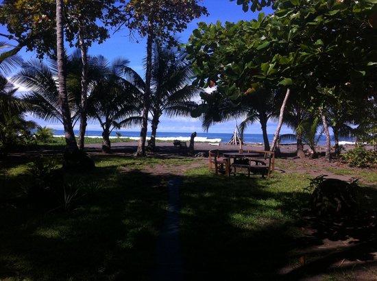 Dos Palmas Beach Cabinas: Beach View