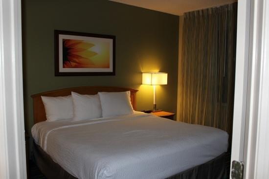 Residence Inn Anaheim Resort Area/Garden Grove : King Bed in one room