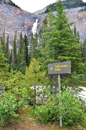 Takakkaw Falls: The sign is pointing the wrong direction!