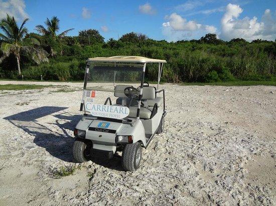 Carriearl Boutique Hotel : Hotel Golf Cart