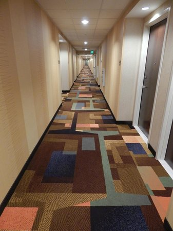 Fairfield Inn & Suites Tustin Orange County: Room Corridor