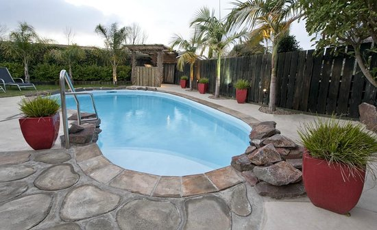 Sport of Kings Motel : Our Newly Landscaped Heated Pool and BBQ Area