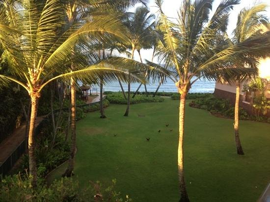 Marriott's Waiohai Beach Club: view from the right side of the balcony Hale 8