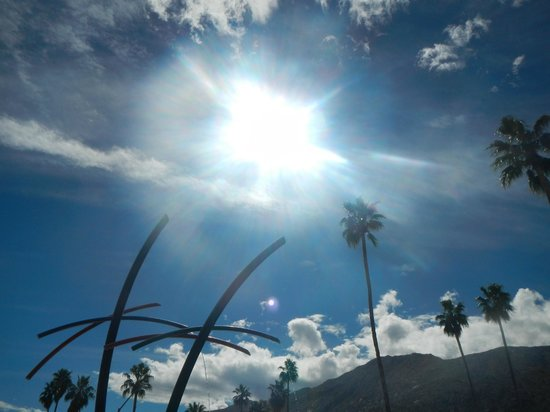 Palm Canyon Drive: sun beam