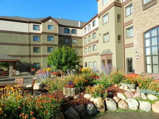 Staybridge Suites Great Falls : Garden area by patio