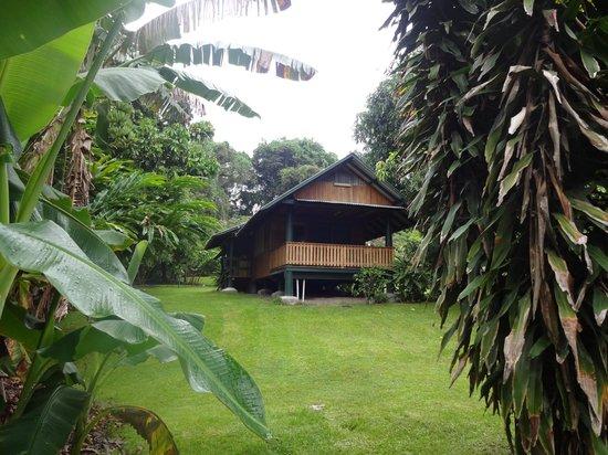 Kokopo Beach Bungalow Resort: Executive bugalow