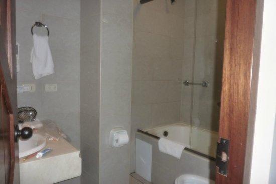 Andina Luxury: Baño del hotel.