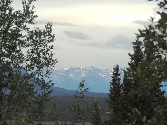 Currant Ridge: View of Wrangel-St. Elias National Park from room at 11:30 pm