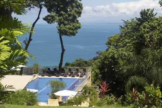 Los Altos Beach Resort & Spa : The pool