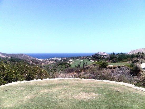 Desert Course at Cabo del Sol: Beautiful