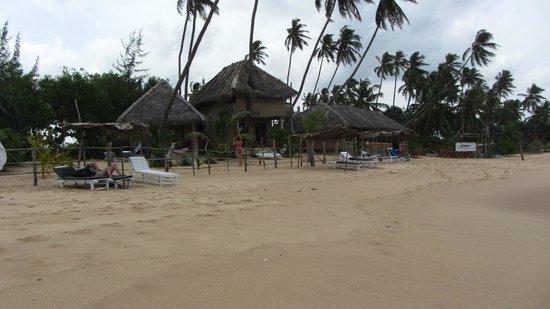 Sandy Cabanas : Lobby
