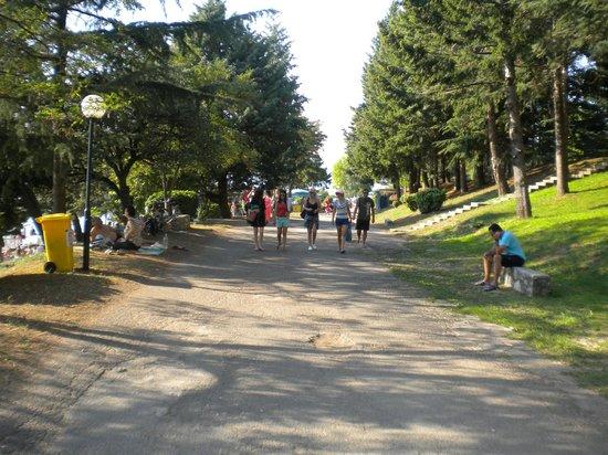 Hotel Metropol: Walking or jogging path by the lake