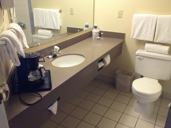 Travelodge Hotel Downtown Windsor: bathroom with the coffee maker inside???