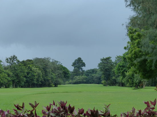 Tollygunge Club: With the sky grey with rain clouds. Tolly is gorgeous
