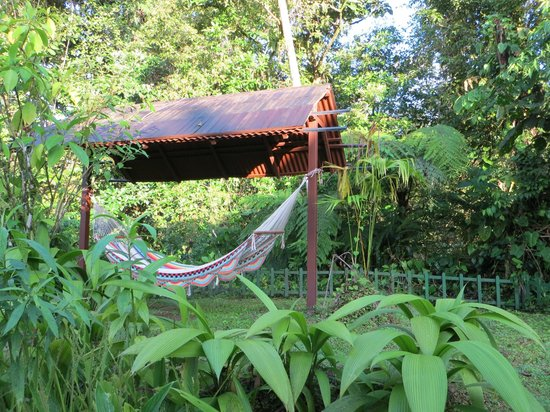 Lost Iguana Resort & Spa: Hammock