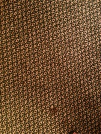 Red Lion Hotel Kalispell : Stains on the carpet
