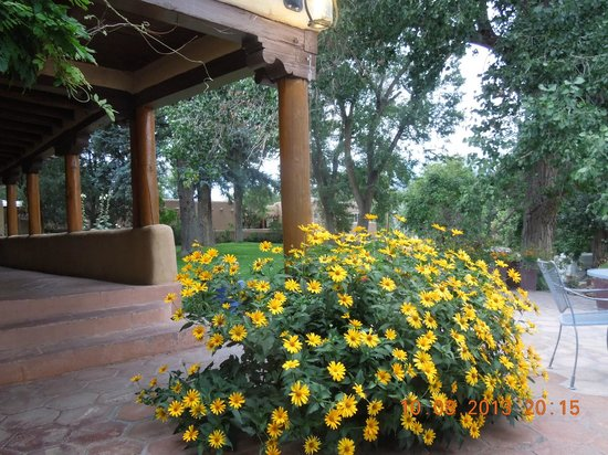 Inn on La Loma Plaza: The patio and grounds.