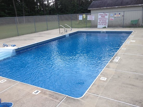 Bay Harbour Motor Lodge : Pool