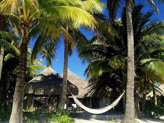 Nieuw! Zoek en boek je ideale hotel op TripAdvisor voor de laagste ...