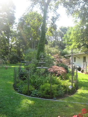 Arbor View House Bed & Breakfast : Lovely Grounds