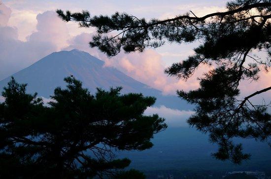 Lakeside Kawaguchiko Sunnide Resort: 部屋からの景色