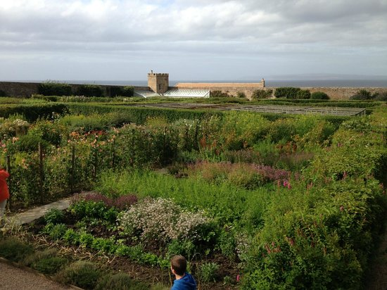 The Castle and Gardens of Mey: Walled  Garden