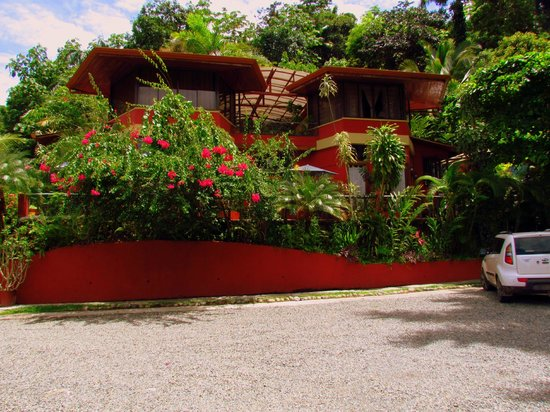 Condotel Las Cascadas: Lush vegetation surrounding poolside suites