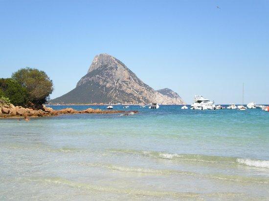 Camping Tavolara: Spiaggia Porto Taverna