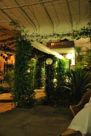 Hotel President: Внутренняя территория, Живописно)