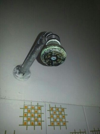 Marebello, Italy: soffione della doccia
